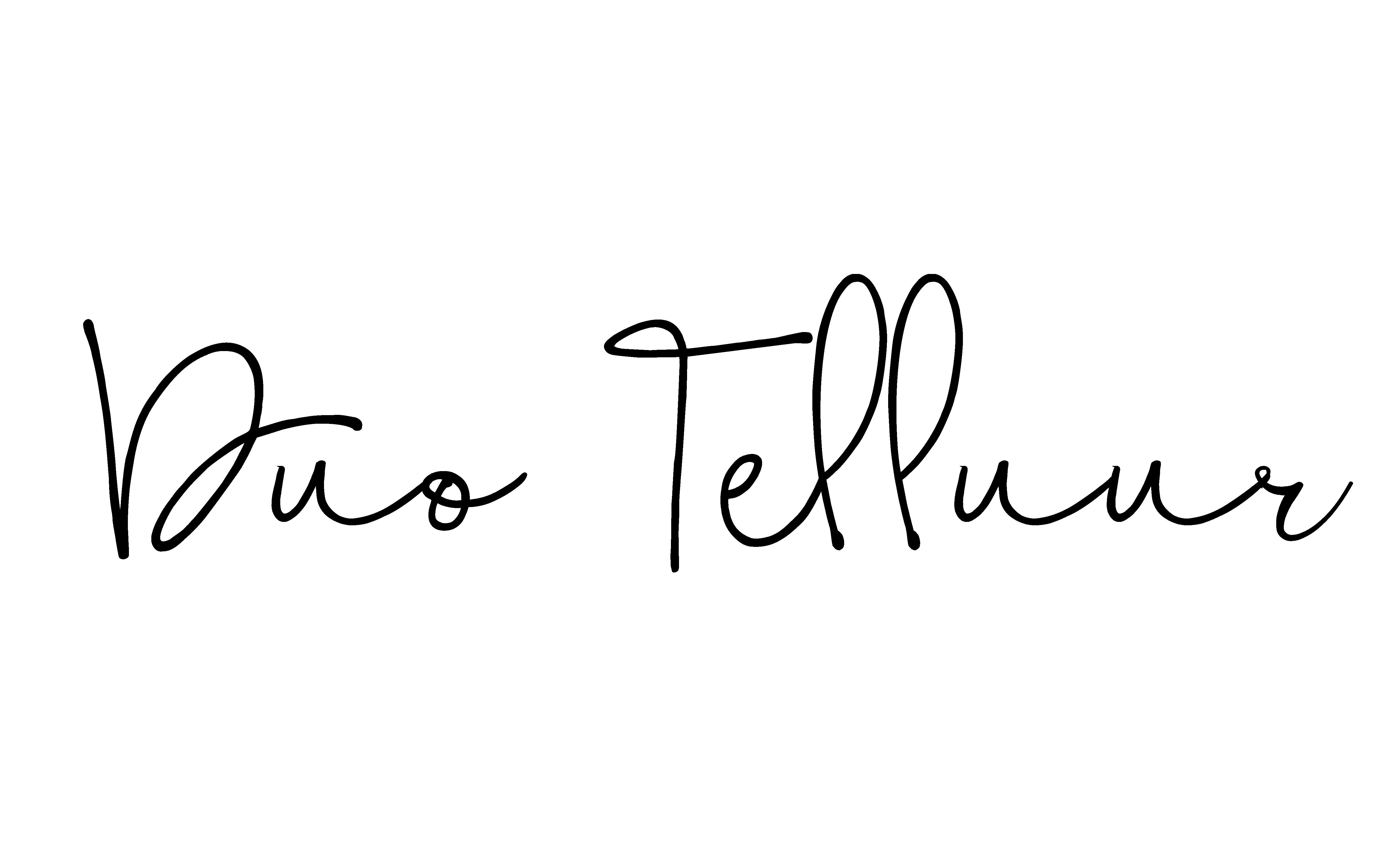 duotelluur_logo_taustata